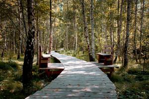 Zum Landschaftspark